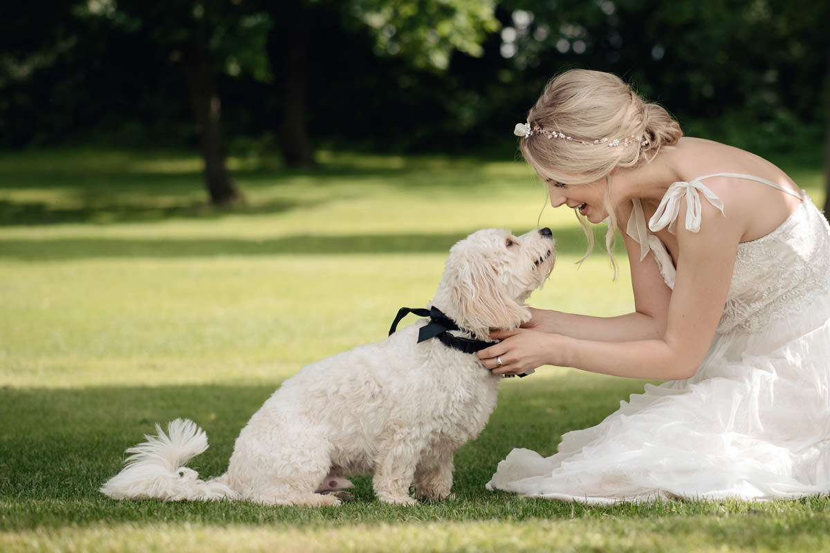 A bride with her cavachon pet dog at her wedding at Wethele Manor in Leamington Spa, Warwickshire