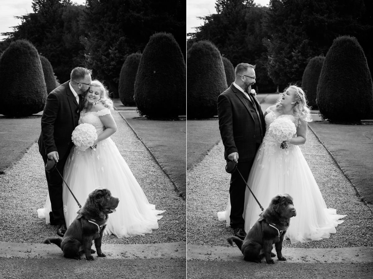 A portrait of the Bride & Groom with their dog at Stoke Rochford Hall, Grantham