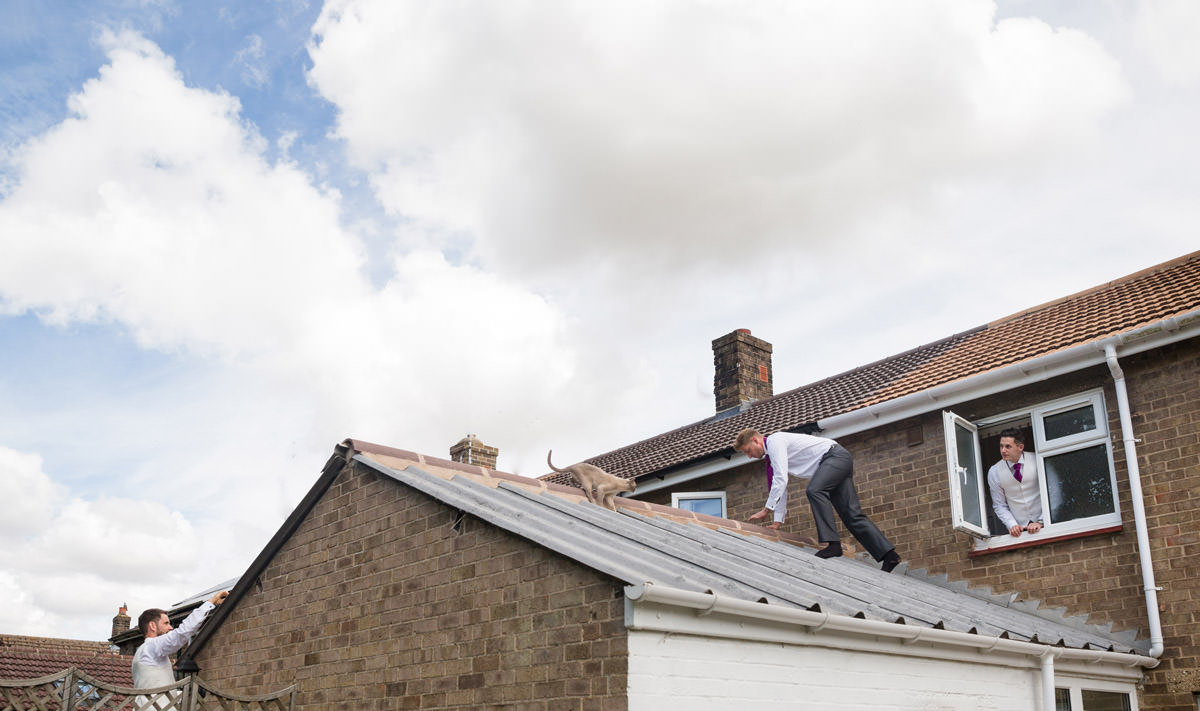 Best Man climbs onto roof to rescue a cat that's stuck
