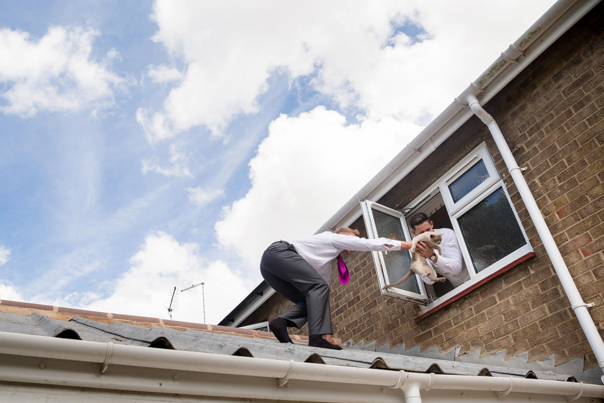 Best Man & Usher on the roof rescuing house cat that had escaped through a window