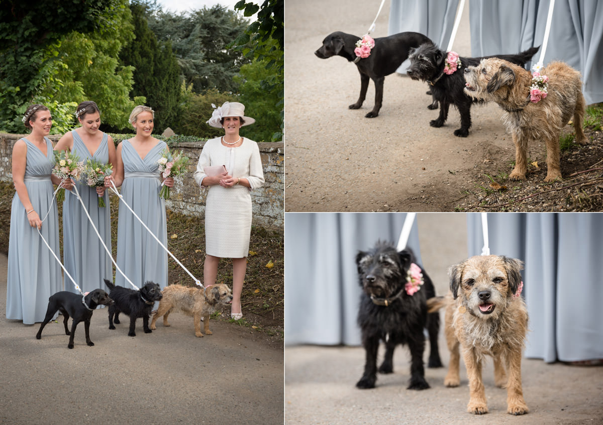Bridesmaids and dog flower girls waiting for the wedding at Maidwell church in Northampton