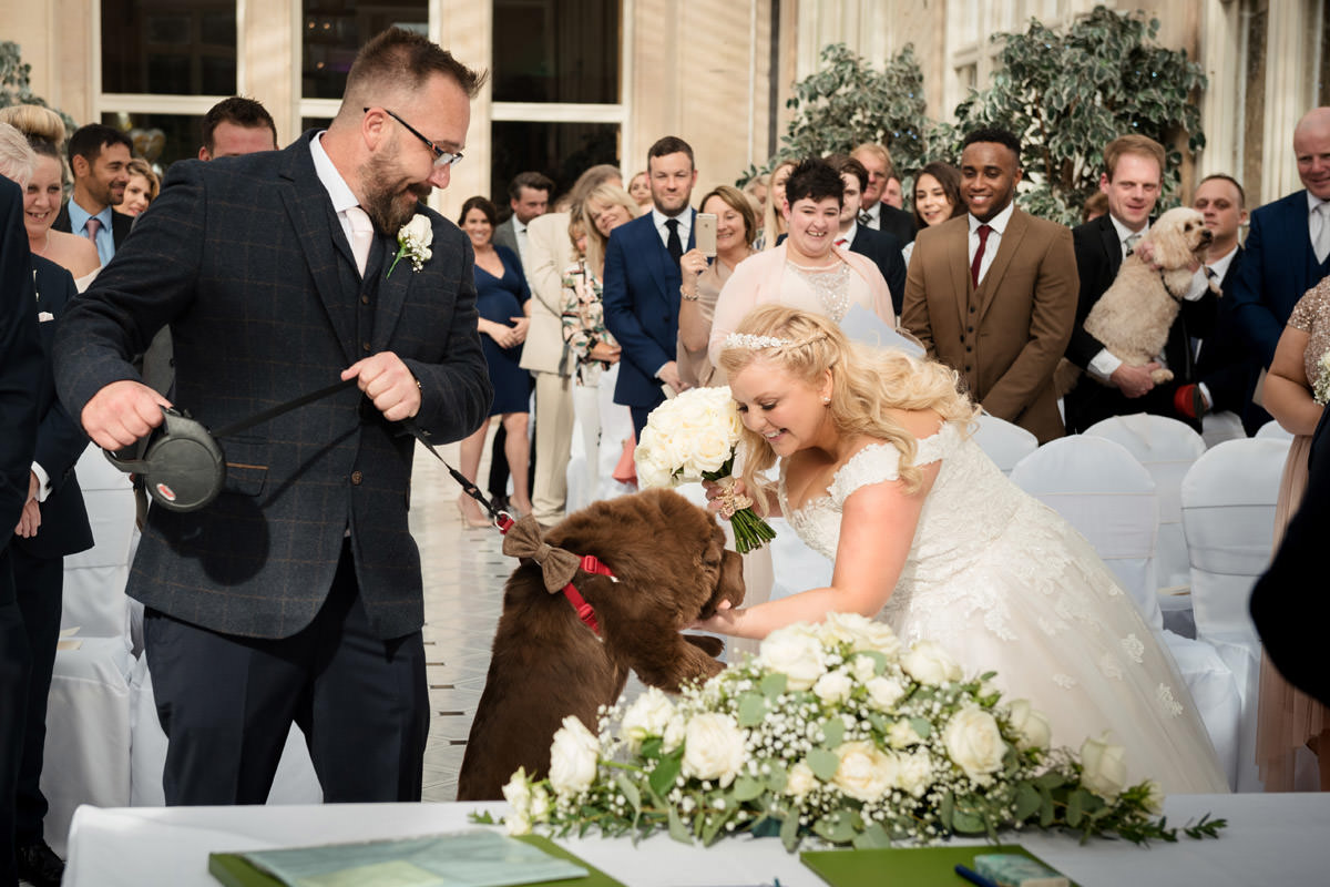 Dog jumping up to greet the bride as she walks down the aisle at Stoke Rochford Hall