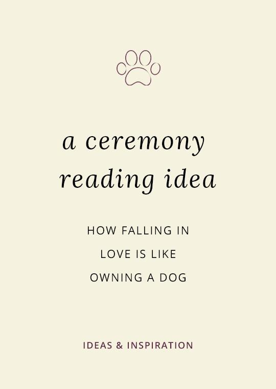 Dog-theme-wedding-ceremony-reading-1002