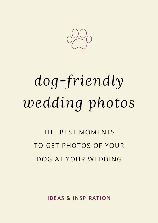 Dogs-in-wedding-photos-1002