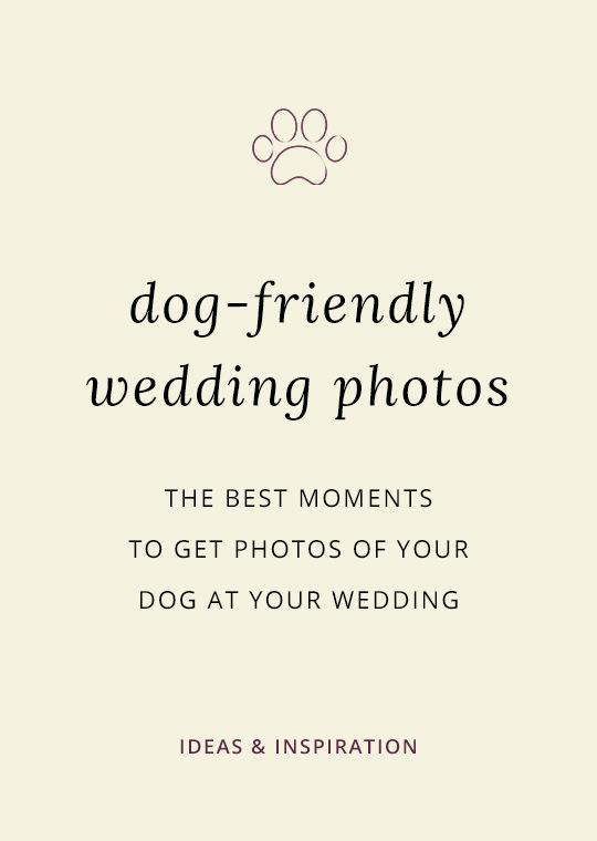 Dogs-in-wedding-photos-1002