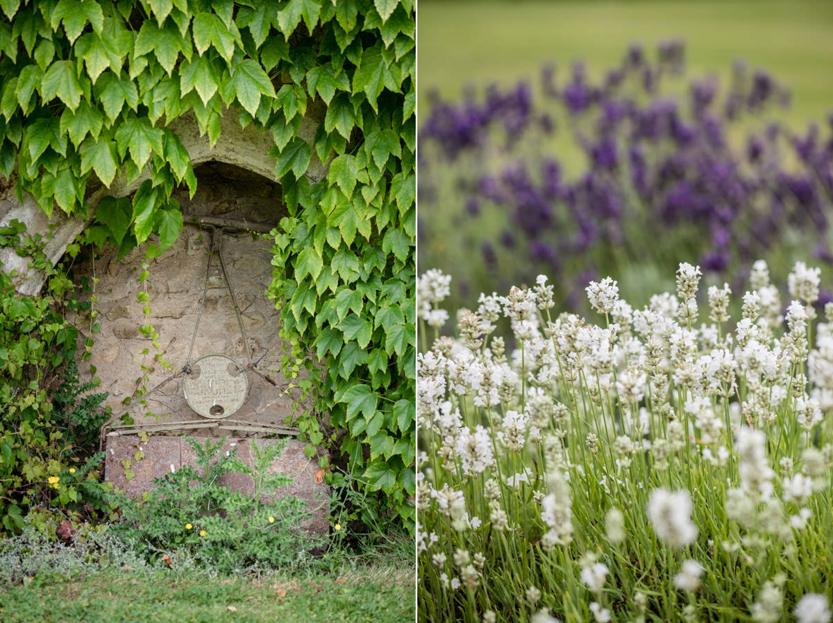A lawnmover and lavender at Notley Abbey