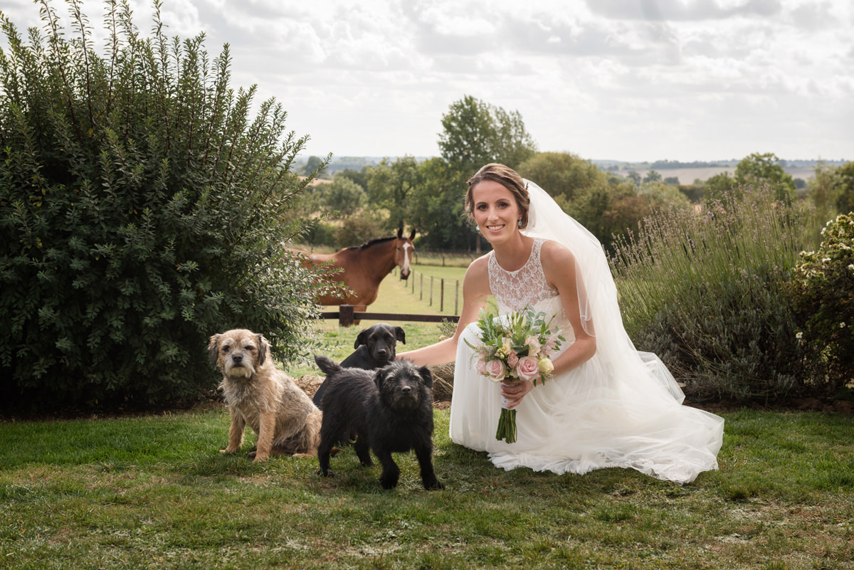 Bride with her horse and three dogs