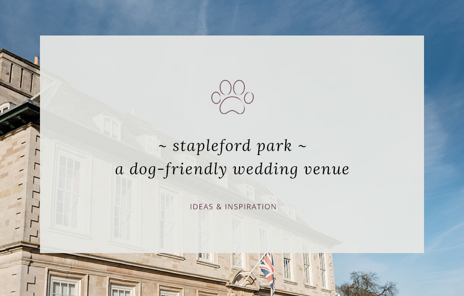 Header image for blog post about Stapleford Park - a dog friendly wedding venue in Leicestershire