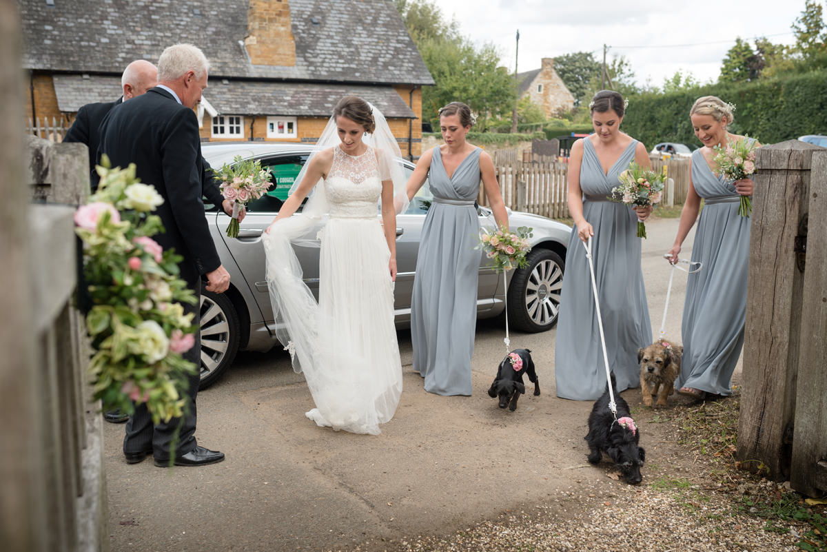 Bride arriving at church with bridesmaids and dogs as flower girls