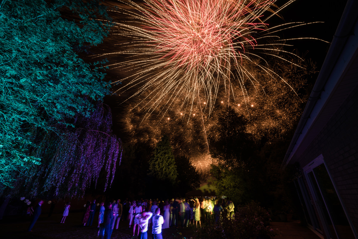 Wedding fireworks with trees lit up